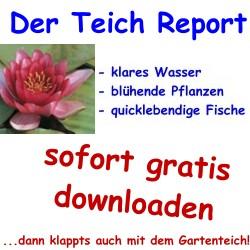 Der-Teich-Report > sofort gratis downloaden...